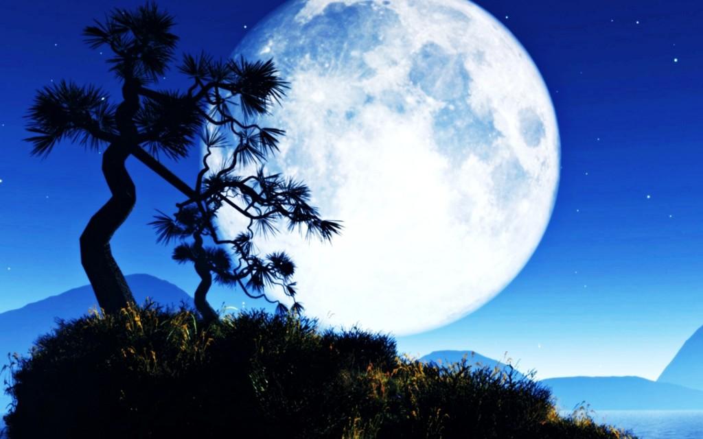 big-moon-211092